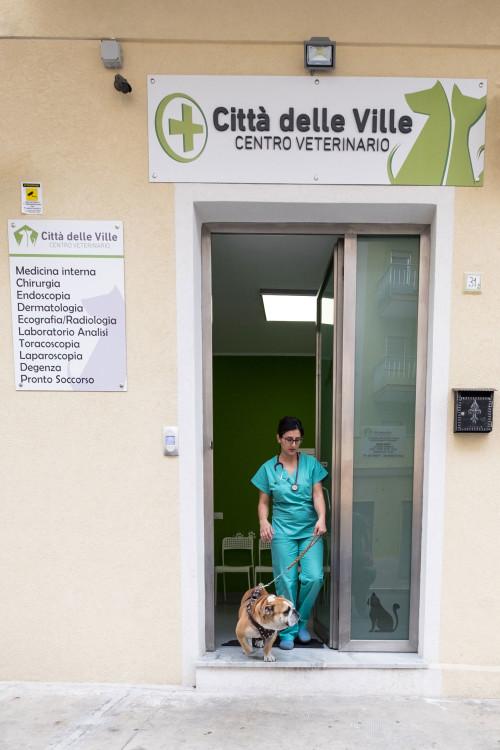 Centro Veterinario Bagheria - ingresso